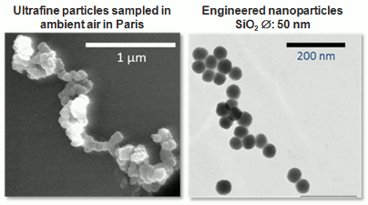 <multi> [fr] Particules ultrafines et nanoparticules manufacturées [en] Ultrafine particles and engineered nanoparticles </multi>